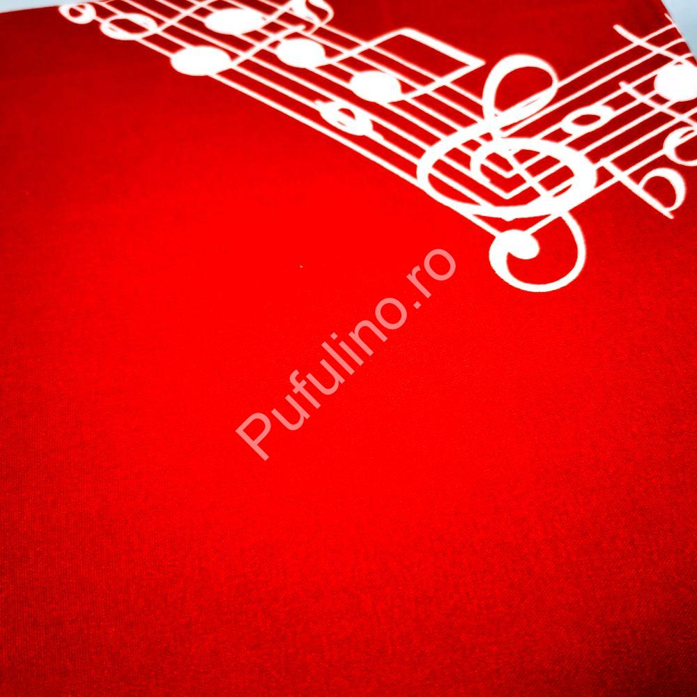 Lenjerie-rosie-note-muzicale